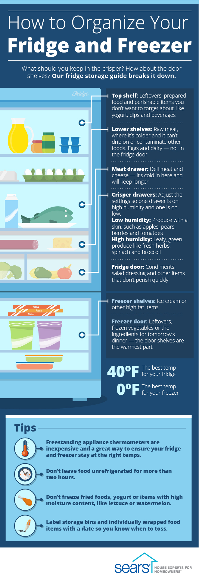 How to Organize Your Fridge and Freezer