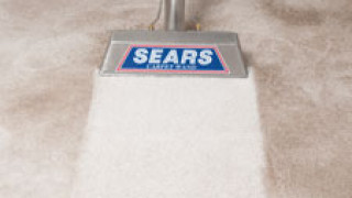 Carpet Cleaning Services Steam Cleaning Carpets
