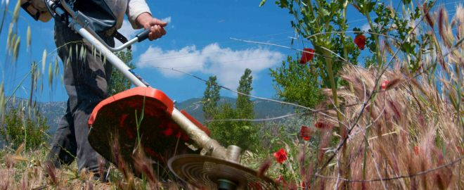 Garden tool safely and maintenance tips