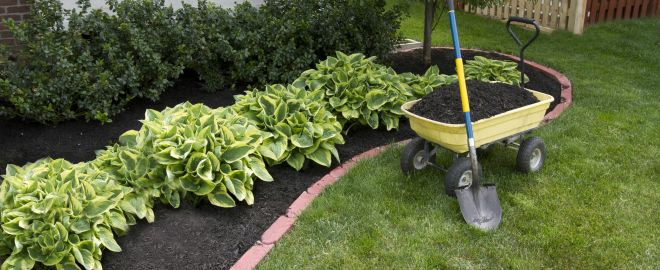 Keep your yard healthy by mulching.
