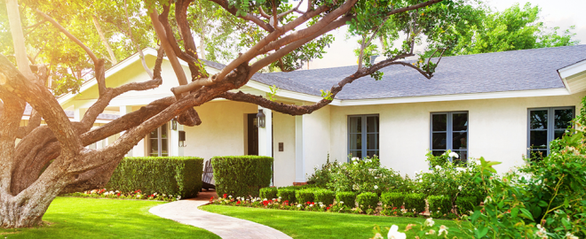 White ranch house with beautiful lawn, garden and tree in front yard