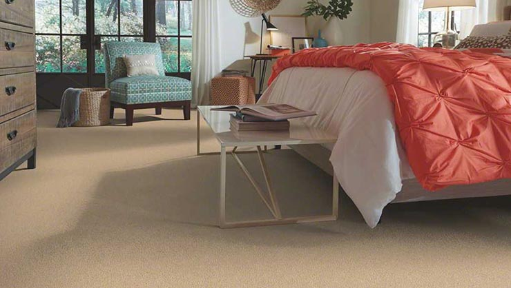 Carpet Pros Charlotte Carpet Vidalondon
