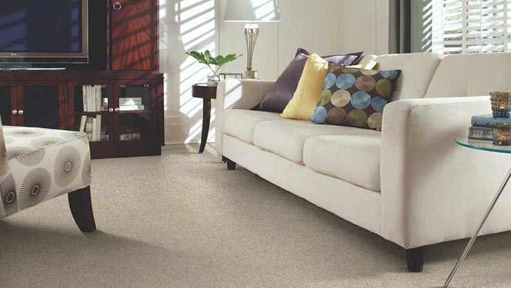 Sears Home Services Carpet Cleaning Reviews Carpet