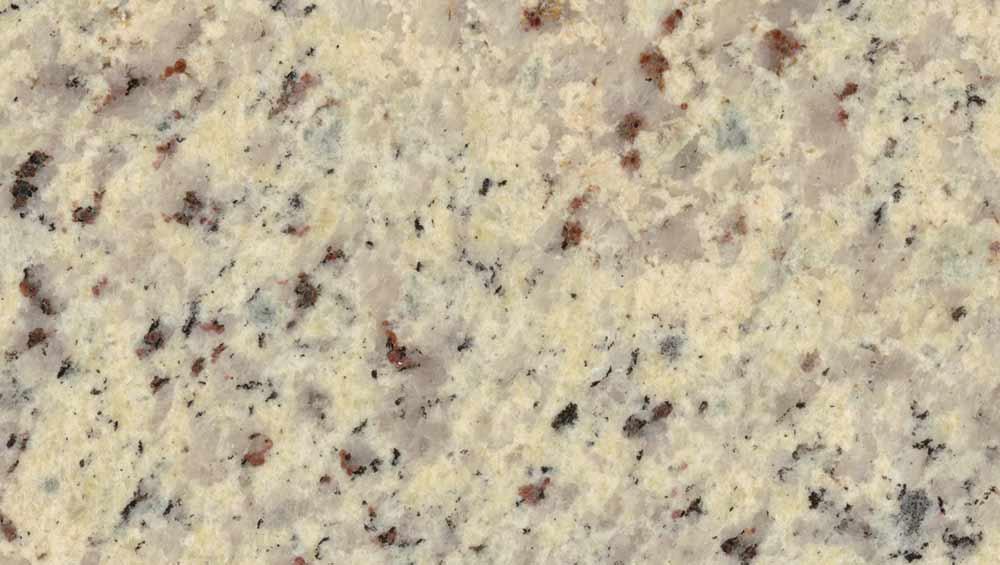 Countertops Granite Lifetime Oyster Shell